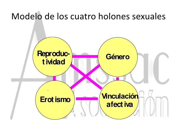 HOLONES DE LA SEXUALIDAD